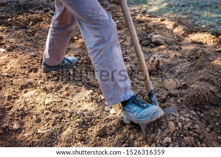 Man digging over earth with a spade in a low angle view of his legs in a gardening and horticulture concept #1526316359