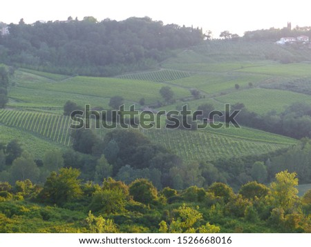 Typical Tuscany landscapes, Tuscany, Italy #1526668016