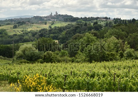 Typical Tuscany landscapes, Tuscany, Italy #1526668019