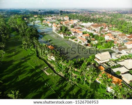 terrace rice fields, Bali, Ubud, Indonesia Aerial view #1526706953