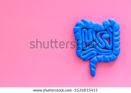 Intestines health. Guts on pink background top view copy space Royalty-Free Stock Photo #1526815415
