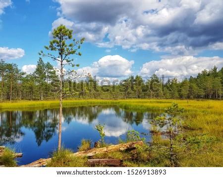Beautiful summer day at Finnish marshlands #1526913893