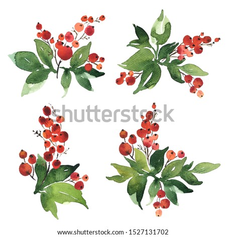 Christmas watercolor set of bouquet arrangings. Holly berries with green leaves #1527131702