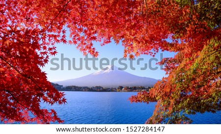 Morning Fuji mountain reflection with red maple leaves in autumn at Kawaguchiko lake,The refreshing morning of Kawaguchiko Lake in autumn With a red maple leaf in the foreground #1527284147