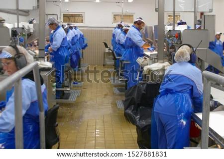 Kvitnes/Norway - May 24 2005: a fish industry in Lofoten islands #1527881831
