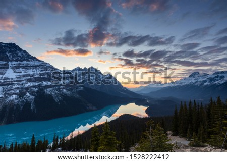 Lake Peyto in the Rocky Mountains  of Banff National Park in Canada #1528222412