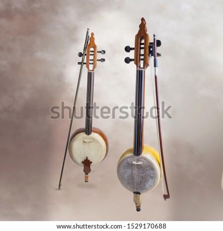 fretless stringed instrument, pumpkin violin #1529170688