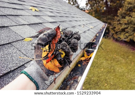 Cleaning leaves and debris out of rain gutters in autumn #1529233904