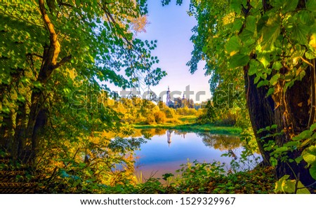 Forest lake water through trees view. Forest lake view. Forest lake scene. Forest lake trees #1529329967