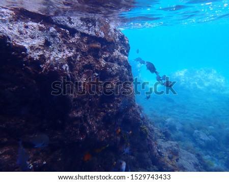 """snorkeling in the sea of """"Hirizo""""    #1529743433"""