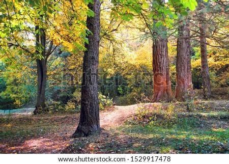Botanical garden in autumn ,Armenia . #1529917478