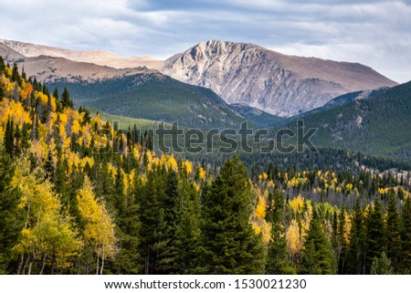 Aspen trees with bright golden autumn leaves mixed with fir and pine trees fill the foreground valley which overlooks a distant bare granite mountain and clouds.  Rocky Mountain National Park, Co. #1530021230