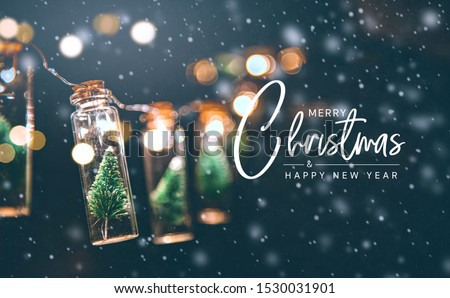 Merry Christmas and happy new year concept, Close up, Elegant Christmas tree in glass jar decoration. #1530031901