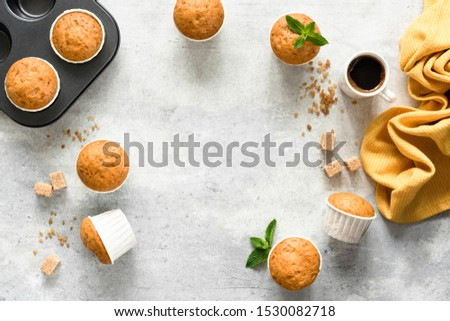 Homemade muffins in paper cups on concrete background. Vanilla muffins. Top view copy space #1530082718