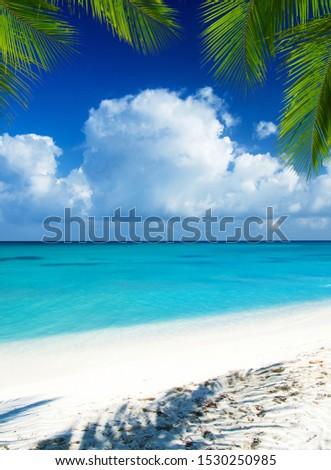 beach and tropical sea. tropical island #1530250985