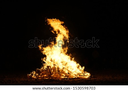 Brilliant Bonfire at Night on a Beach #1530598703