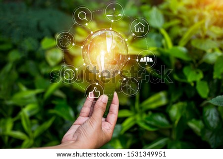 Light bulb and  growing on stacks of coins on nature green background.   #1531349951