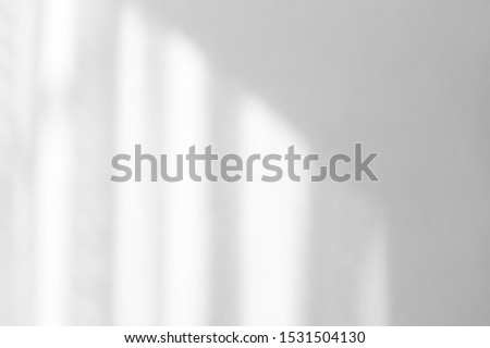 Organic drop diagonal shadow on a white wall, overlay effect for photo, mock-ups, posters, stationary, wall art, design presentation #1531504130