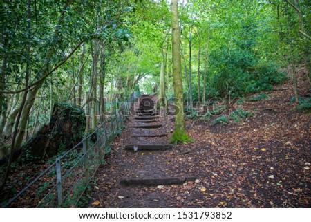 Bath, UK, October 10, 2019: Wooden Steps along the Trail on the National Trust, Bath Skyline Walk at Claverton Down, Bath #1531793852