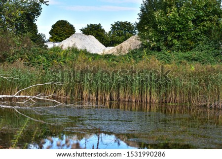 Reed is Growing in a Pond, Trees and a Sand Heap and a Stone Heap in the Background, Swabian Alb, Germany, Europe #1531990286