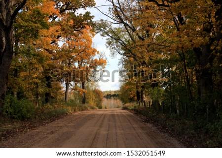 autumn leaf stove leaf symphony #1532051549