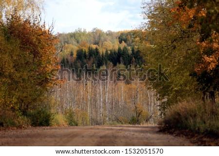 autumn leaf stove leaf symphony #1532051570