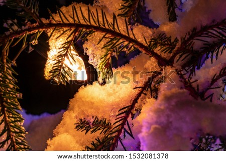 Very shiny Christmas decorations outside, night, Northern countries, Led lamps usage to save energy for green environment, snow corn, fir tree needles illuminated by lamps that on the Christmas tree #1532081378