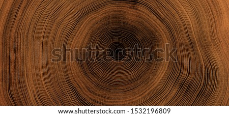Old wooden oak tree cut surface. Detailed warm dark brown and orange tones of a felled tree trunk or stump. Rough organic texture of tree rings with close up of end grain. #1532196809