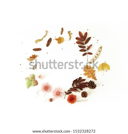 Flowers and leaves frame composition . Beautiful autumn wreath on white background Photo #1532328272
