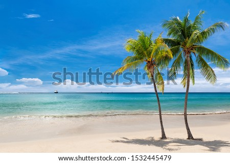 Coco palms on sunny beach and turquoise sea in Jamaica paradise island. Summer vacation and tropical beach concept. #1532445479