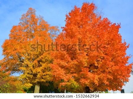 Fall landscape Eastern township Bromont, Quebec, Canada #1532662934