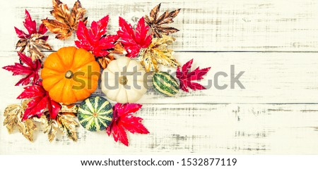 Pumpkin with maple leaves decoration. Autumn floral flat lay. Vintage toned picture #1532877119