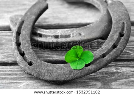 Horseshoe and four-leaf cloverleaf background #1532951102