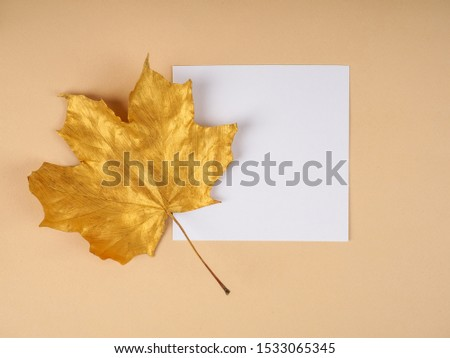 Golden maple leaves as a template, the template. #1533065345