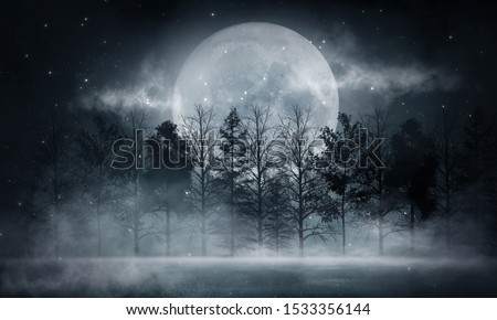 Dark forest. Gloomy dark scene with trees, big moon, moonlight. Smoke, shadow. Abstract dark, cold street background. Night view. #1533356144