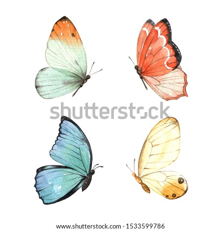 Butterfly watercolour clip art for wedding invitation or greeting cards