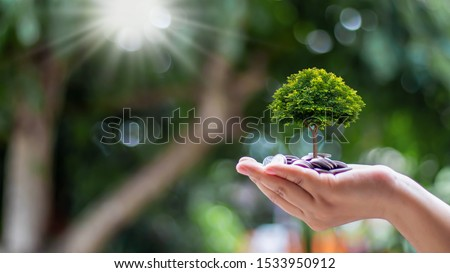 Planting small trees on coins and a natural green background, money growth concept. #1533950912