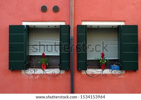 Two identical windows on a red facade #1534153964
