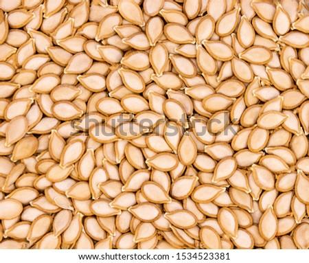 dried pumpkin seeds texture shot from above #1534523381