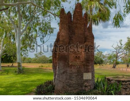 giant termite mound in the city park Mataranka