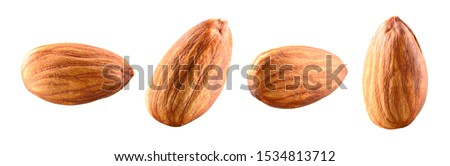 Almond isolated. Almonds on white background. Almond set. Full depth of field. #1534813712