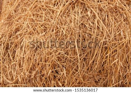 Hay background. Hay in the village closeup texture #1535136017