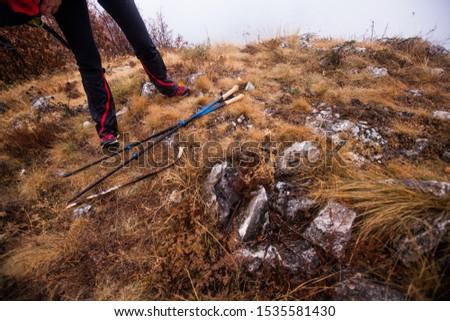 Trekking Sticks, hiking, active people.  #1535581430
