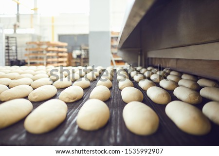 Automatic bakery production line with bread in bakery factory #1535992907