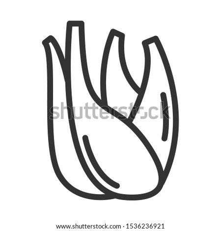 fennel spice outline vector icon isolated on white background. fennel spice flat icon  herbs and spices for natural wellness Royalty-Free Stock Photo #1536236921