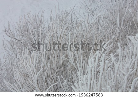 Muju County. Deokyu. Jeollabuk-do. Korea. December 22. 2012: Beautiful snowscapes around the trail of Deokyu Mountain and the Hyangjeokbong Peak #1536247583