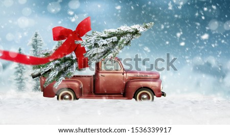 Pick up transports Christmas tree with red bow