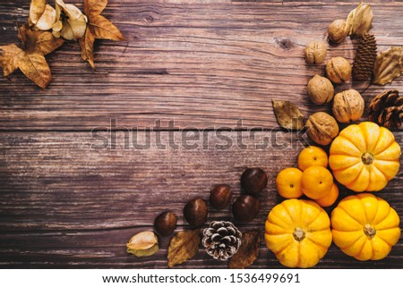 Happy Thanksgiving Day with pumpkin and nut on wooden table #1536499691