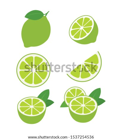 limes fruits collection of vector illustrations isolated on white eps 10 #1537254536