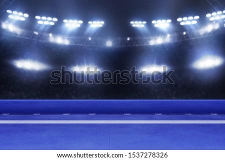 Karate tournament arena, sport concept
